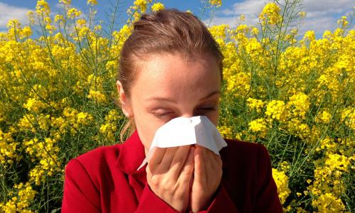 Врач перечислил методы лечения аллергии