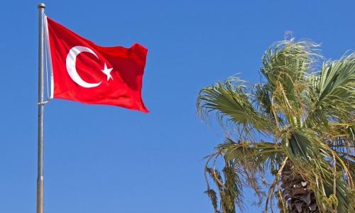 РФ приостанавливает авиасообщение с Турцией и Танзанией