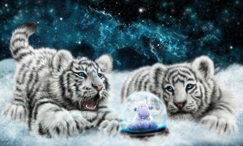 В каком цвете встречать 2022 год - год Тигра