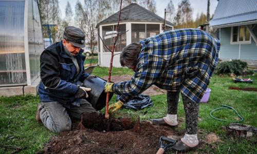 Налог на огород: государство заставляет крестьян добровольно лишиться земли